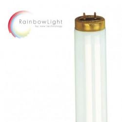 Ergoline Prestige 1600 Hybrid Performance LED 52x 200W(32x Beauty Light LED/4x 520W/4x 520W Smart Light Performance