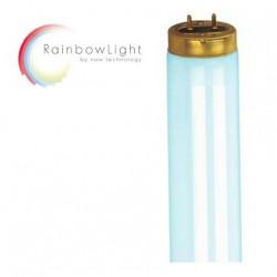 3-D Sound Unit (3D-Sonido)+ bronceador de hombros para modelos Ergoline Prestige